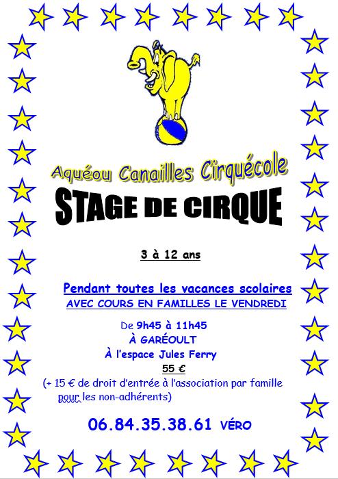 Stage Eté 2019